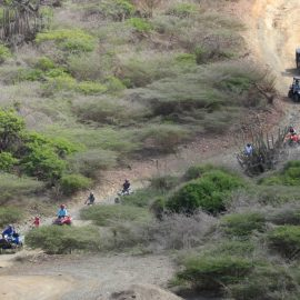 Action-Tours-Aruba-ATV-UTV-tour-114