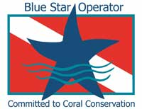 Blue Star Operator Logo