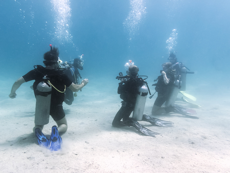Keep Your Scuba Skills Sharp With a Refresher Course
