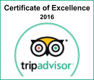 Online Booking Software Provided by TRYTN - Tour Operator Reviewed by TripAdvisor
